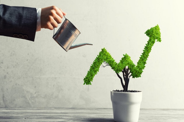 Some Investing Tools If You Are A First-Time Investor